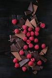 Variation av att hugga av choklad med hallon Arkivbild