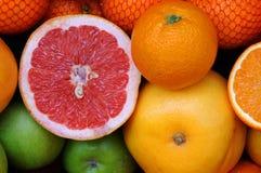 Variation av frukt i marknaden Arkivfoton