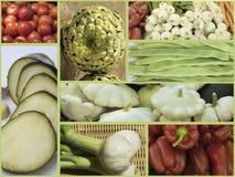 Variation av grönsaker Arkivbilder