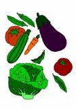 Variation av grönsaker på vit bakgrund Arkivbilder