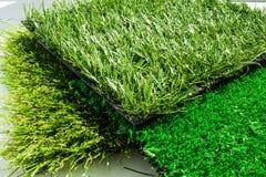 Variation av konstgjort gräs eller dess typer Royaltyfria Bilder