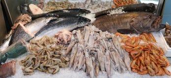 Variation av laxar för havsfiskar, havsaborren, tioarmade bläckfiskar, räkor, bläckfisk på räknaren i en grekisk fisk shoppar Fotografering för Bildbyråer