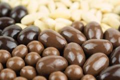 Variation av mandlar i choklad Arkivbild