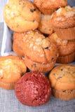 Variation av muffin i en korg Royaltyfri Fotografi