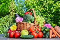 Variation av nya organiska grönsaker och frukter i trädgården Royaltyfri Fotografi
