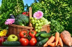 Variation av nya organiska grönsaker och frukter i trädgården Arkivbilder