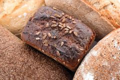 Variation av nytt smakligt bröd, closeup fotografering för bildbyråer