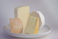 Variation av ost Arkivbild