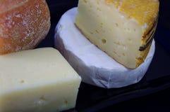 Variation av ost på svart Royaltyfri Foto