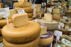 Variation av ost som är till salu på marknaden Royaltyfri Bild