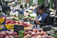 Variation av persikor på den till salu marknaden Persikor är ett magasin av vitaminer Shopparen väljer persikan på stadmarknad Royaltyfria Bilder
