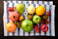 Variation av sunda frukter Arkivbilder