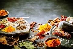 Variation av torkade kryddor för asiatisk matlagning fotografering för bildbyråer
