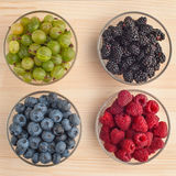 Variation of berries Stock Photography