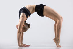 Variation of Bridge Pose Royalty Free Stock Photo