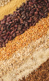 Variation of cereals. Close-up of various cereals, beans, buckwheat, rice, millet, corn flakes Royalty Free Stock Photo