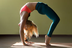 Variation of Chakrasana Pose. Portrait of sporty beautiful blond young woman in sportswear working out in gym, doing deep backbend, Variation of Bridge Pose royalty free stock images