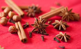 Variation of Christmas spices Royalty Free Stock Image