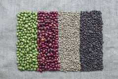 Variation from Coffee Beans and Coffee Berries royalty free stock images