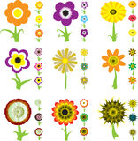 Variation de fleur illustration stock