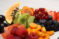 Variation de fruit d'été Image stock