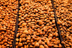 Variation of different nuts on market Royalty Free Stock Images