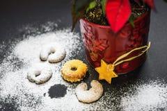 Variation du petite biscuit de Noël, fleur d'étoile de Noël et de toutes neigeux avec du sucre Photos stock