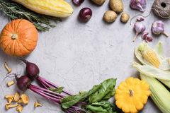 Variation of fresh colorful vegetables. Autumn food frame. Top view, copy space Stock Photography