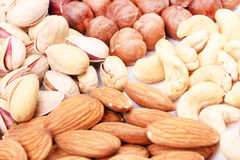Variation of nuts Royalty Free Stock Photo