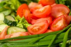 Variation of vegetables Stock Image