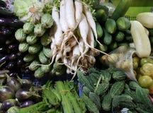 Variationer av grönsaker Arkivfoton