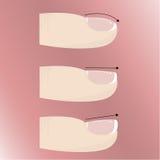 Variationer av olika former och typer av spikar plattan Manikyr och spikar förlängningar Arkivfoto