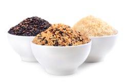Variationer av rice Fotografering för Bildbyråer
