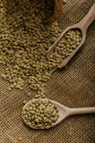 Variations lentils, lentils bio Royalty Free Stock Image