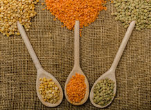 Variations lentils, lentils bio Stock Photo