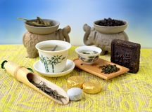 Variations of tea Royalty Free Stock Images