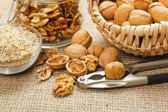 Variations of walnut Stock Photos