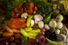 variationsgrönsaker Arkivfoto
