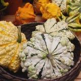 Variaty av konstiga dekorativa Haloween pumpor på säsongsbetonad marknad för bonde` s Royaltyfria Bilder