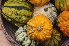 Variaty av konstiga dekorativa Haloween pumpor på säsongsbetonad marknad för bonde` s Royaltyfri Bild