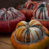 Variaty av konstiga dekorativa Haloween pumpor på säsongsbetonad marknad för bonde` s Arkivfoto