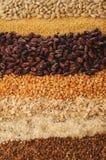 Variazione dei cereali Fotografia Stock Libera da Diritti