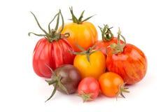 Variazione dei pomodori sugosi Fotografia Stock Libera da Diritti