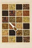 Variazione del tè. Immagine Stock