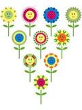 Variazione sveglia del fiore Fotografia Stock Libera da Diritti