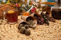Variazioni di condimento per il tè Fotografie Stock Libere da Diritti