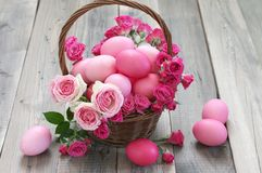 Varicolored pink Easter eggs in wicker basket. With roses decor on rustic grey wooden background Royalty Free Stock Images