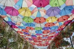 Varicolored umbrellas Stock Photography