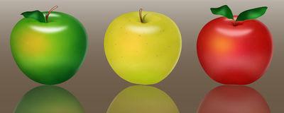Varicoloured apples Royalty Free Stock Image