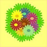 varicoloured bukettfärg Arkivbilder